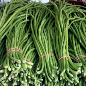 yard long asparagus bean seeds